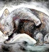 babywombat-170x180