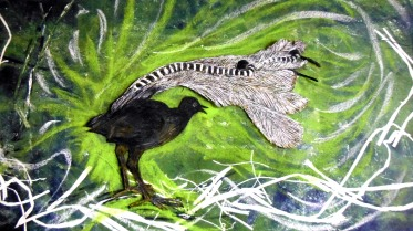 Superb_Lyrebird_green