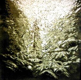 Tarkine Rainforest linocut 2014