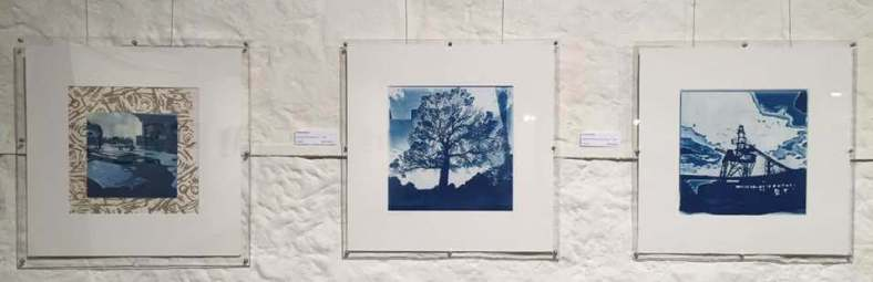 cyanotypes-Reclaimed-HIP-Sac july 19